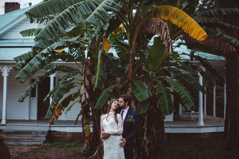 Love under the Banana Tree
