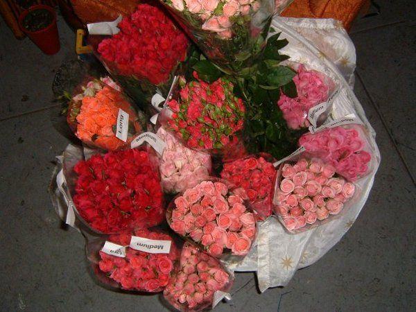 Tmx 1328337568683 207724105198421887112037424931493148162nDIY Portland wedding florist