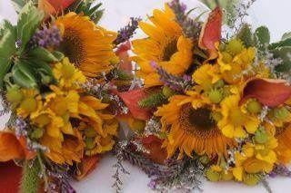 Tmx 1328338998025 40367935664567102869519076033095056414623611615281335n Portland wedding florist