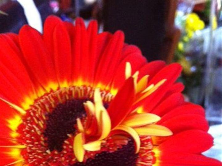 Tmx 1328348058944 Mutantgerb Portland wedding florist