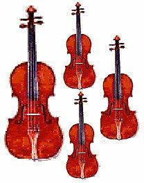 violin35