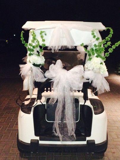 golfcart6