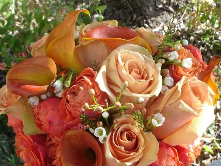 Tmx 1296250101491 Orangebouqet Kenwood wedding florist