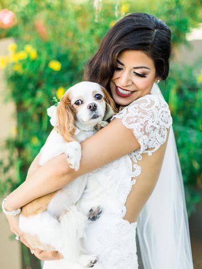 Sanctuary loves dogs