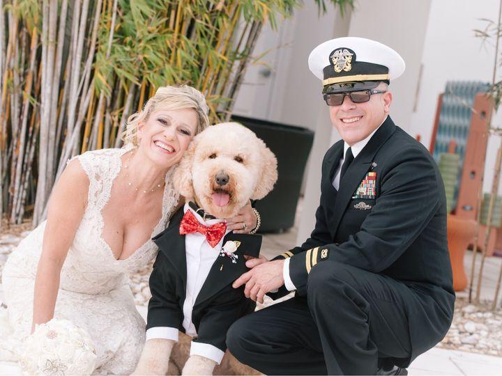 Tmx With Dog 51 71850 161366418618457 Orlando, FL wedding venue