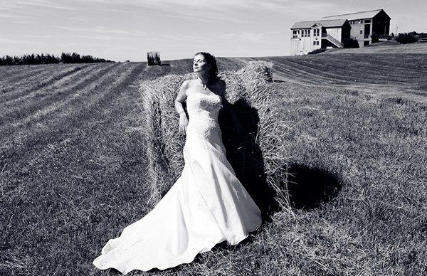 Glamorous bride in a field black-and-white