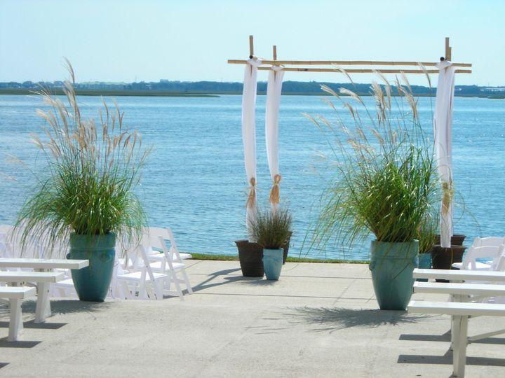fe8bcdcd8d78768a pampus grass patio