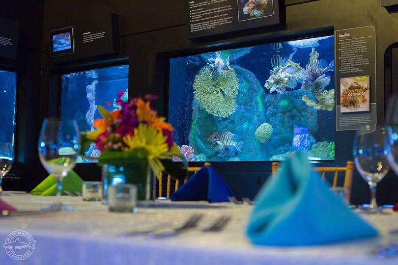 Tables by the aquarium