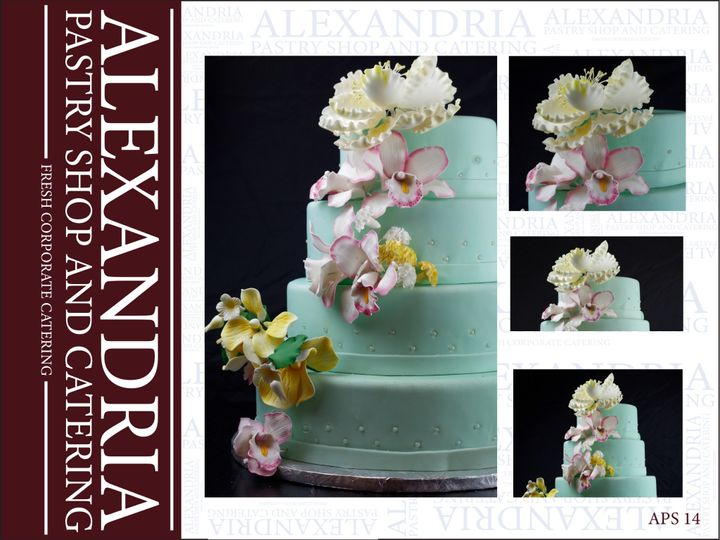 Tmx 17 51 160 159406010446886 Alexandria, VA wedding cake