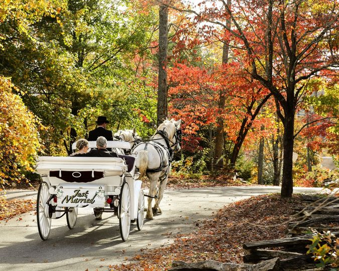 Grand Entrance & Just Married Carriage Rides