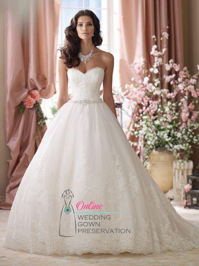 Online Wedding Gown Preservation - Dress & Attire - Strongsville, OH ...
