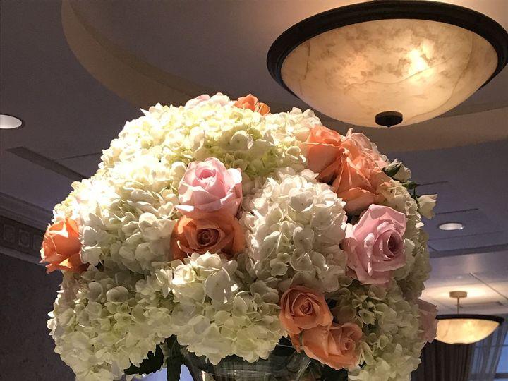 Tmx 1533763140 C75c1d304dd9ce26 1533763135 51145f092eecce86 1533763125441 24 653A8764 298B 4B5 Stoughton, MA wedding florist