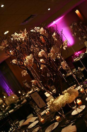 Up-Lights Wedding Double Tree Grand Miami