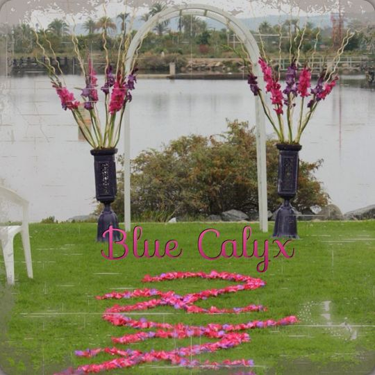 Outdoor ceremony with petal design aisle runner. Gladiolus in hot pink and purple with natural color...