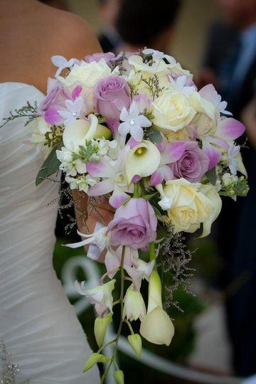Honey Bunch Flowers Pompano Beach Fl Weddingwire