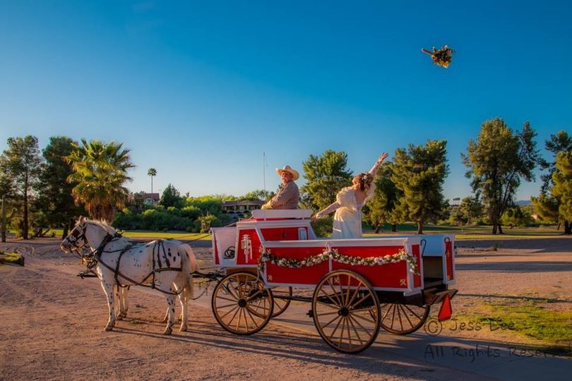 Wickenburg Horse Carriages
