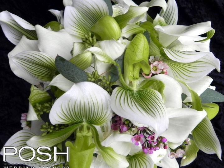 Tmx 1361324979691 DSCN1799 Seattle wedding florist
