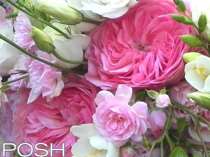 Tmx 1361324993378 DSCN3624 Seattle wedding florist