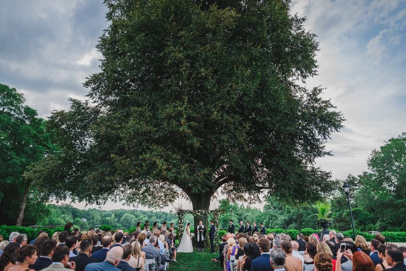 Wedding ceremony under the Linden Tree