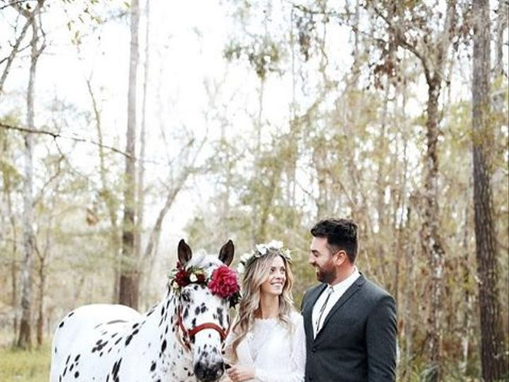 Tmx 1528822438 Ec5df0bbd64f92bc 1528822437 187ff376ed97a9f6 1528822430326 5 Screen Shot 2018 0 Tampa wedding dress