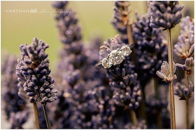 Tmx 1416171273915 Little Herb House Wedding 0253 Raleigh, North Carolina wedding venue