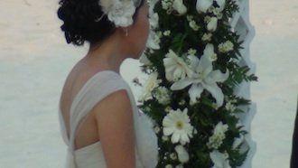 Tmx 1337722912763 PDCWedding Mill Creek wedding planner