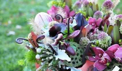 Elite Florals