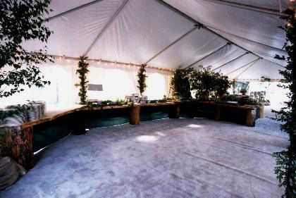 Tmx 1529350201 A7f59e5b741ee5c9 1529350201 01b6791a5ed5b6af 1529350198725 7 N6g Lake Placid, NY wedding planner