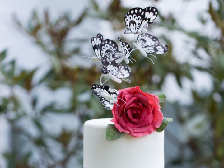 Tmx 1507645216684 Lalineadessertsbutterflycake 150dpi Havertown wedding cake