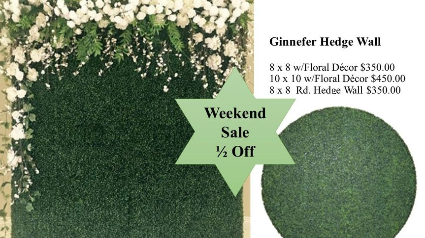 Ginnefer Hedge Wall