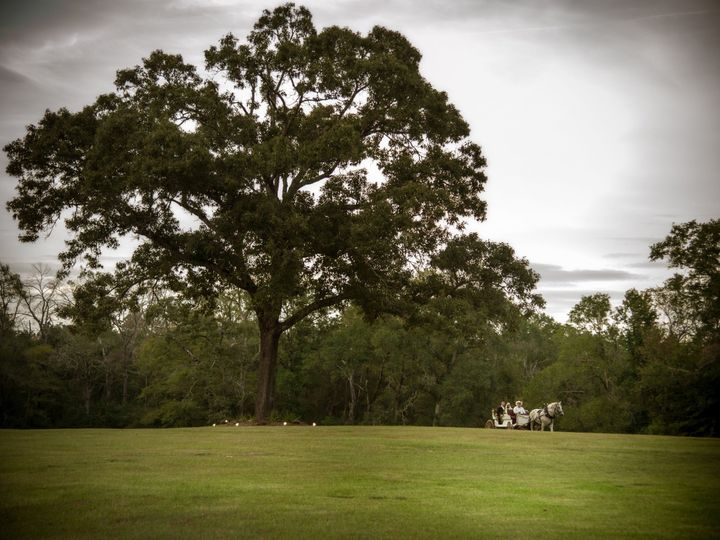 Tmx Horse Carriage And Manor Tree 51 3660 158576393123104 Huntsville, TX wedding venue