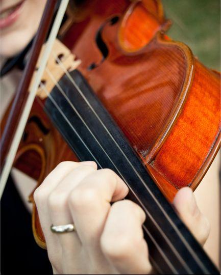 Closeup of the violin