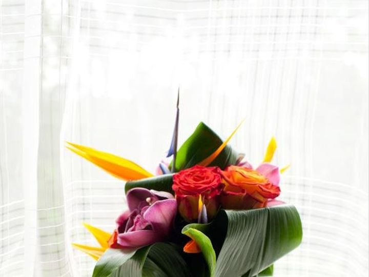 Tmx 1349882111075 Tropical Colts Neck wedding florist