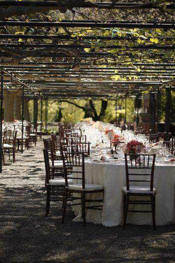 white and mahogany vineyard