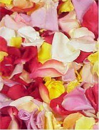 Tmx 1204621147388 RosePetals%2420 Seattle wedding planner