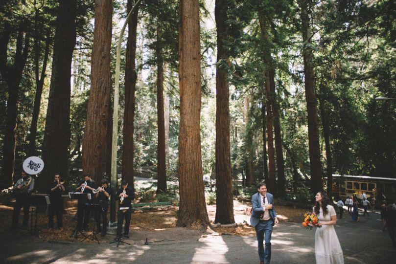 stern grove wedding1