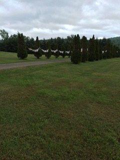 Tmx 1468763725272 Entrance To Wedding Glens Falls wedding officiant