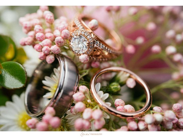 Tmx 1536343462 0f78609405a0b7f6 1536343460 57df07892fb779f1 1536343431127 9 Victoria Dan 045 Danbury, New York wedding venue