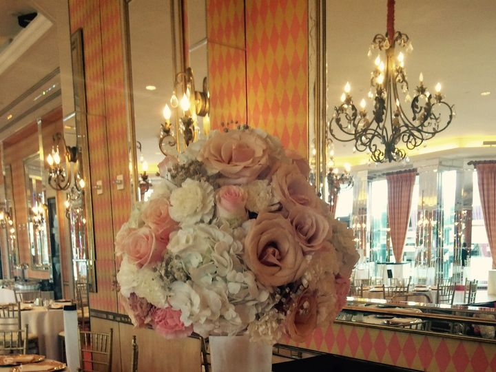 Tmx 1452832833069 Tall With Wall Behind North Richland Hills wedding florist