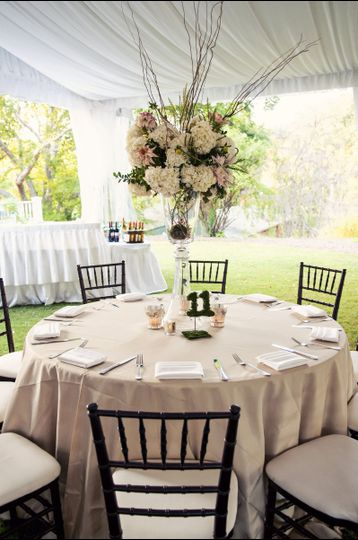Specialty chairs and linens available from recommended vendors.