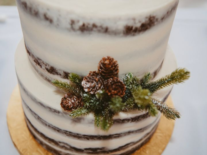 Tmx Img 2711 51 1008070 Chesapeake, VA wedding photography