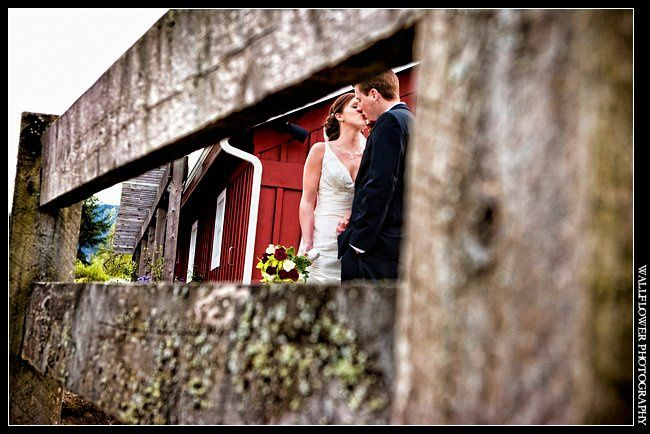 800x800 1360602415925 wallflowerphotocavinesswedding057