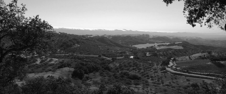 hilltop b and w