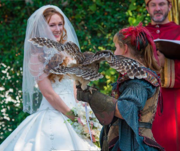 Bride and eagle