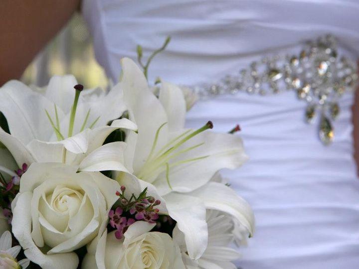 Tmx 1492698856531 Wed38 Anoka, MN wedding officiant