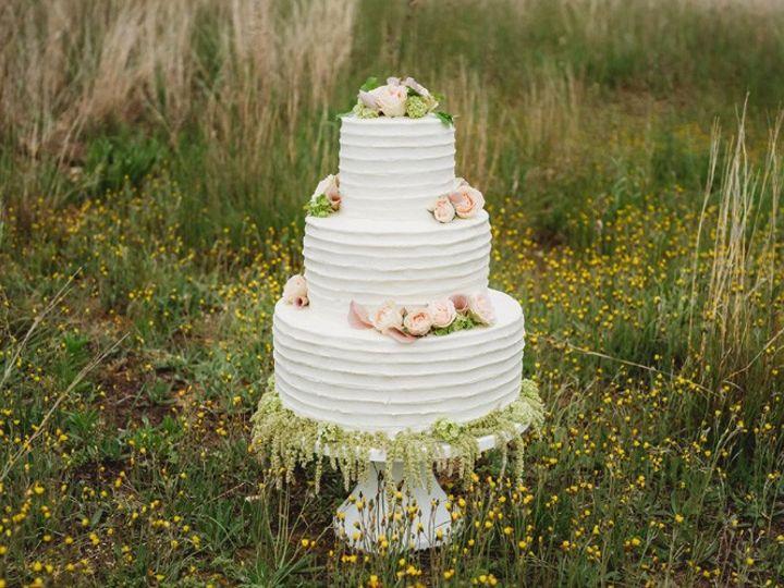 Tmx Cake In Grassfb 51 908170 1560975483 Ann Arbor, Michigan wedding rental
