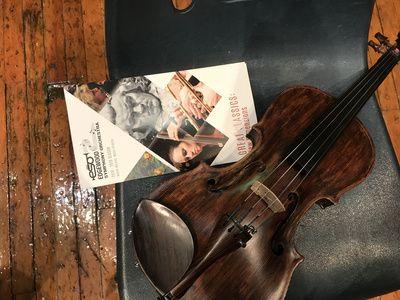 Violin and brochure