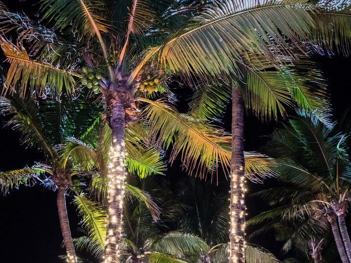 Tmx Verola Studio Kimpton Wedding 142 51 161270 160009552155750 Vero Beach, FL wedding venue