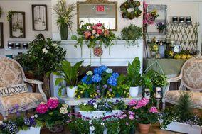 Always in Bloom, Inc