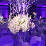 Tmx 1360948840916 IMG1344800x5331150x150 Carmel wedding dj